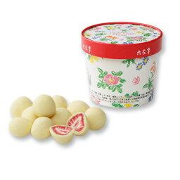 六花亭 チョコレート 六花亭 ストロベリーチョコ ホワイト