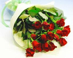 蘭(ラン) バラの花束 お買い得赤バラ20本の花束 お誕生日 プレゼント ギフト 結婚祝い 記念日 退職祝い いい夫婦の日 送料無料