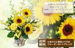 ポット 【送料無料】ひまわりと黄色いバラのウォーターポットアレンジ