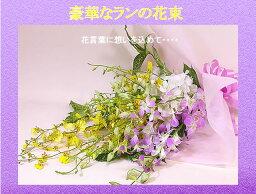蘭(ラン) 【送料無料】花 ギフト 豪華なランいっぱいの花束 敬老の日 女性 ギフト 花 ギフト 誕生日 プレゼント・記念日・お祝い・お見舞い 結婚祝