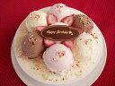 アイスケーキの通販 特製・手作りバースデイアイスケーキ 5号