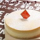 ニューヨークチーズケーキ とりいさん家のCaramelチーズケーキ(4〜5人分)味わいのスイーツ ニューヨークチーズケーキ 濃厚 お菓子 デザート キャラメル 誕生日 ホールケーキ パーティー お取り寄せ バースデー 有名 ギフト サワークリーム 冷凍 ドゥーブルフロマージュ 子供
