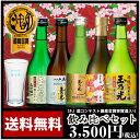 日本酒飲み比べセット 日本酒 最高金賞受賞酒入り豪華版飲み比べセット TNY-5 送料無料 ネット限定