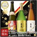 日本酒飲み比べセット 日本酒 純米大吟醸 ・ 純米吟醸 飲み比べ セット TG-3B 720ml×3本 送料無料