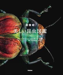 昆虫図鑑 [超微細]美しい昆虫図鑑 オックスフォード大学自然史博物館 秘蔵標本集成 [ レヴォン=ビス ]