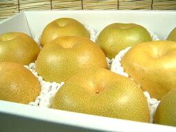 梨 送料無料・和歌山の梨 豊水品種 4kg【10〜11玉】ギフト用選別[秀品]寺西梨園から産地直送にてお届けします。