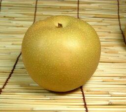 梨 送料無料・和歌山の梨 豊水品種 2kg【6玉】ギフト選別[特選品]寺西梨園からお届けします。
