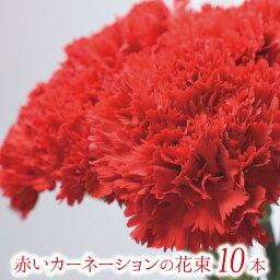 カーネーション 赤いカーネーションの花束 10本【フラワーギフト】ギフト 贈り物 プレゼント お祝い