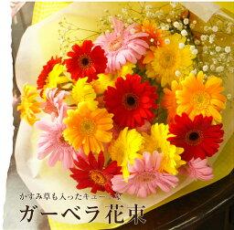 ガーベラ ガーベラとかすみ草の花束 記念日プレゼント 誕生日 出産祝い ピアノ・バレエ発表会 記念日 フラワーギフト