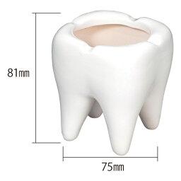 歯の灰皿 歯型アッシュトレー 灰皿 小物入れ
