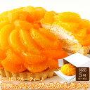 タルトのギフト 天然生活 さっぱりフルーティー♪贅沢★オレンジ&みかんタルト≪冷凍≫ SM00010086