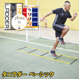 DVD(サッカー) タニラダーベーシック シングルセット(サッカー版)DVDセット ラダートレーニング