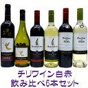 ワイン飲み比べセット チリワイン白赤 飲み比べ6本セット 02P21Aug14