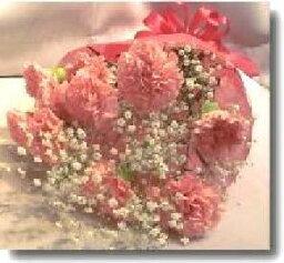 カーネーション 【送料無料】ピンクのカーネーションの花束