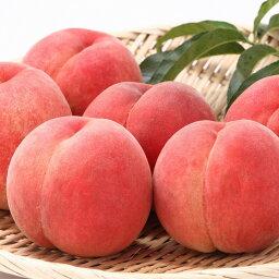 桃 【ふるさと納税】厳選 白桃 たっぷり5kg <やわらか> 品種おまかせ 秀品 (12〜20玉)