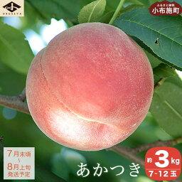 桃 【ふるさと納税】あかつき 約3kg