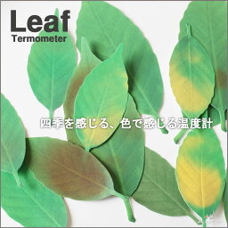 Leaf Thermometer アッシュコンセプト☆リーフ【+d 体温計 エコグッズ おもしろグッズ】