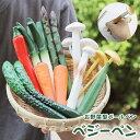 ベジーペン ベジーペン リアルでユニークな野菜型のボールペン