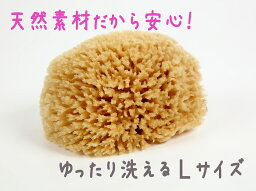 スポンジ 【エーゲ海産】天然海綿 Lサイズ_10P03Sep16