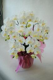 ジンビジューム 胡蝶蘭 5本立Mサイズ 人工観葉植物 造花
