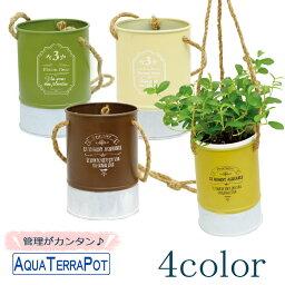 ワイヤープランツ アクアテラポット ツートンブリキハンギング10.5全4色 観葉植物全10種 シュガーバイン アイビー ヘデラ ペペロミア ワイヤープランツ