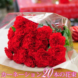 カーネーション 母の日 花束 ギフト 母の日 カーネーション 赤いカーネーション20本の花束 送料無料 記念日 結婚記念日 お祝い