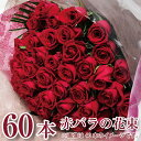 60本の赤いバラ 花 プレゼント ギフト 赤いバラの花束60本 薔薇 ばら 誕生日 プロポーズ 年の数 結婚記念日 発表会 送料無料 ローズ