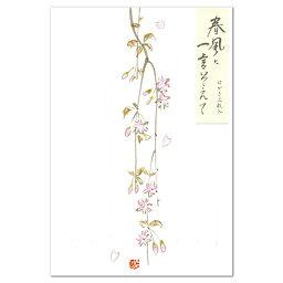 表現社 メッセージカード 花はがき 春風に一言そえて 桜 24-184(A-9) 表現社