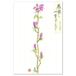 表現社 メッセージカード 花はがき 春風に一言そえて 木蓮 24-189(A-9) 表現社