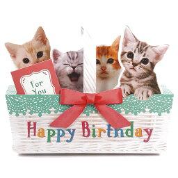 ミュージック  メッセージカード バースデーカード メロディカード P240 ねこかご サンリオ 子ねこたちが鳴き声で歌うミュージック お誕生日カード Birthday Card グリーティングカード お誕