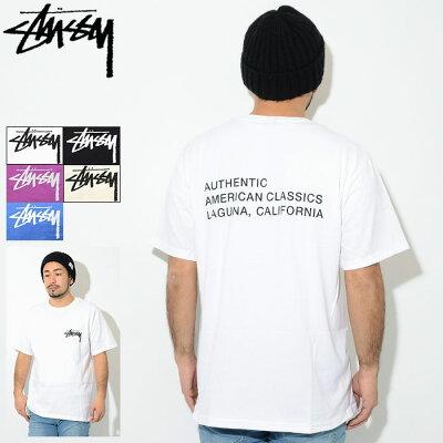 ステューシー STUSSY Tシャツ 半袖 メンズ American Classics(stussy tee ティーシャツ T-SHIRTS カットソー トップス メンズ・男性用 1904338 USAモデル 正規 品 ストゥーシー スチューシー)[M便 1/1] ice filed icefield