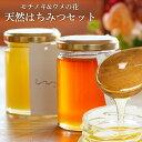 ベーカリー ミツバチ カヌレ 送料無料 UU はちみつ食べ比べ2個セット モチノキ ウメノ花 ニホンミツバチ 蜂蜜 濃厚 天然はちみつ 国産 非加熱 希少な日本蜜蜂の 純粋ハチミツ 日本製 ユーユー