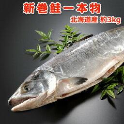 新巻鮭 北海道産 新巻鮭(秋鮭)一本物【約3キロ】 送料無料・化粧箱入