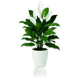 スパティフィラム 【観葉植物 造花】スパティフィラム 80cm(SC(CT)触媒・光触媒/インテリア/お祝い)【フェイクグリーン 観葉植物 造花 カジュアルポット】