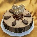 アイスケーキの通販 アイスケーキ 誕生日 チョコレートアイスケーキ 6号サイズ 直径18cm 大きめサイズ ケーキアイス 大人数用 ケーキ アイス お誕生日 バースデイ お誕生会 ホームパーティ プレゼント カード付き アイスクリーム 魁ジェラート