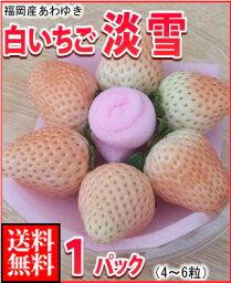 いちご 福岡産白いちご淡雪(あわゆき)4-6玉