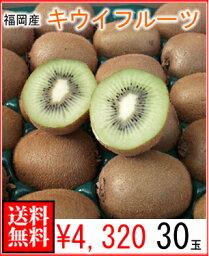 キウイ 福岡県産キウイフルーツ30玉