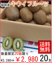 キウイ 福岡県産キウイフルーツ20玉【常温便】
