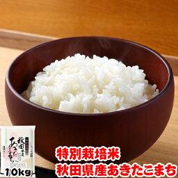 あきたこまち 令和元年産 特別栽培米 秋田県産 あきたこまち 10kg (5kgx2袋) お米 ギフト