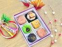 上生菓子 【 お祝 】6個入 高級 上生菓子 練り切り 期間限定 お取り寄せ 個包装 送料無料