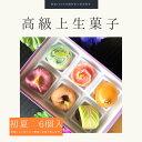 上生菓子 【 初夏 】6個入 高級 上生菓子 練り切り 期間限定 お取り寄せ 個包装 送料無料