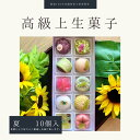 上生菓子 【 夏 】10個入 高級 上生菓子 練り切り 期間限定 お取り寄せ 個包装 送料無料