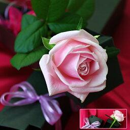 1本 お花にメッセージ バラ 薔薇 メッセージフラワー プリ花 お花 アレンジメント 贈り物 / 花 / お花に印字 / アートフラワー / 記念日 / プレゼント / バレンタイン / 母の日[ 楽ギフ_包装 ][ 楽ギフ_メッセ入力 ]