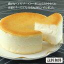クリームチーズケーキ チーズケーキ【とろける2層のチーズケーキ(直径11.5cm)】送料無料 ベイクドチーズケーキ バースデーケーキ 誕生日ケーキ 小島屋乳業製菓 新宿Kojimaya