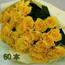 黄 黄色いバラの花束 60本 送料無料 生花(お祝い プレゼント ばら 薔薇 還暦祝い フラワーギフト 男性 女性 誕生日 結婚祝い 結婚記念日 結婚式 ボリューム バレエ発表会 ホワイトデー お返し)