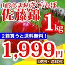 さくらんぼ 【訳あり】山形産さくらんぼ(佐藤錦)1kg