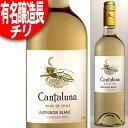 年代ワインギフト 有名醸造長の造るチリ! カンタルナ ソーヴィニョン・ブラン [2014]年 白 750ml(チリ・ワイン) ※年代は変ることがあります。