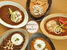 皿 【送料無料】和食器 ナチュラルオーバルカレー皿&パスタ皿<5カラー> 各色1枚ずつセット