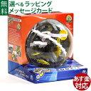 パープレクサス  【知育玩具】OHS パープレクサス Perplexus ルーキー 3D迷路 グッド・トイ2013【ステイホーム おもちゃ】