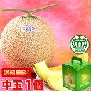 メロン 北海道、沖縄・一部離島は発送不可数あるメロンの中の最高級ブランド!静岡産クラウンメロン 中玉1.3kg前後×1個